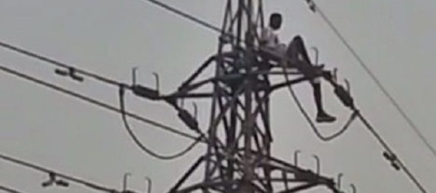 Video: Boy Climbs High Voltage Pole, Says he Wants Money from Nana Addo